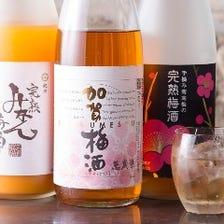 【おすすめ梅酒25種以上~】