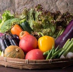 きらりで出会える新鮮野菜