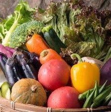野菜たっぷりの彩り焼き野菜