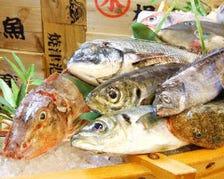 漁業権があるから刺身の鮮度が抜群!