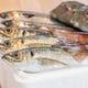 創業164周年】三浦鮮魚卸売会社直営で安くて美味しい!