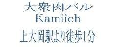 大衆肉バル Kamiichi