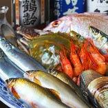 瀬戸内の鮮魚【岡山県】