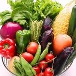 瑞々しいお野菜たち【国内】