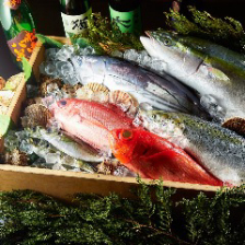 売り切れ御免!豊洲直送鮮魚