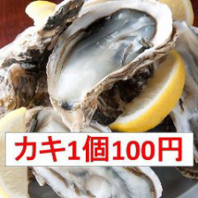 【!衝撃価格!】厚岸産カキ1個100円