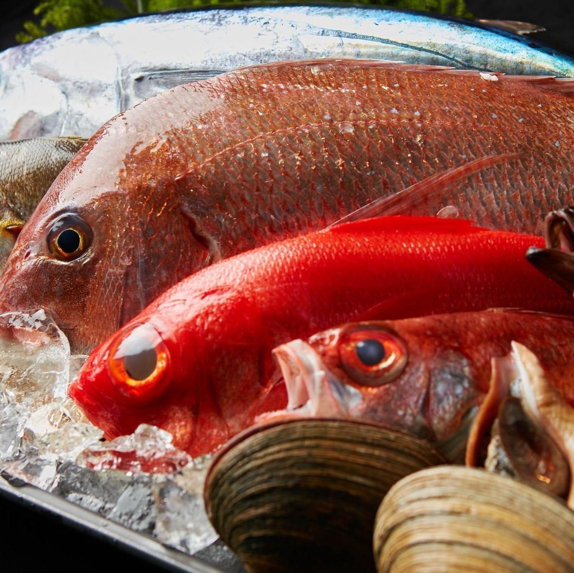旬の魚をお愉しみください♪