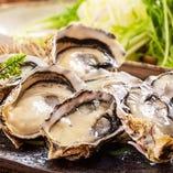 【極上の牡蠣】人気の播磨灘産牡蠣をせいろ蒸しで♪