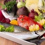 三浦漁港から仕入れた鮮魚を使用