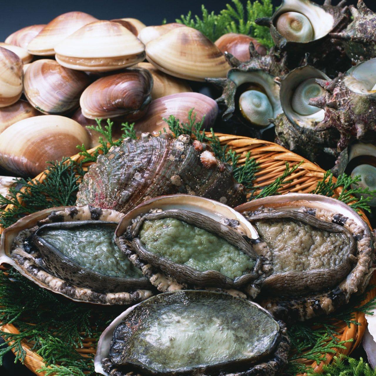 生簀からすくった新鮮鮮魚をご用意