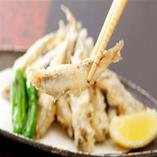 こいわしの天ぷら/広島の人で知らない人はいない! 地元定番料理のこいわしの天ぷら、一度は食べてみたい!絶品のお味です!