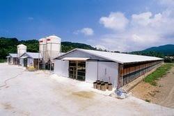 華味鳥は北部九州の緑豊かな場所の陽光鶏舎で飼育されています。