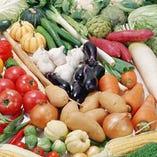 契約農家直送の新鮮野菜【千葉県】