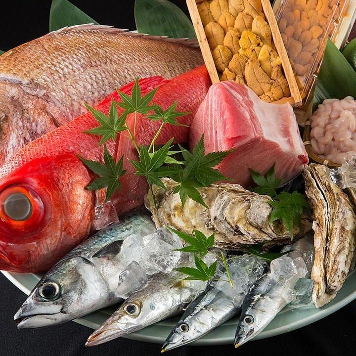 こだわりの鮮魚で作る四季のメニュー