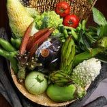 季節の美味しさ!野菜メニューは、旬野菜を厳選して仕入れています