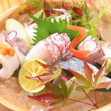 新鮮な瀬戸内の活魚をご堪能下さい!