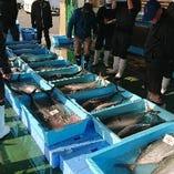 目利きで選んだ旬の鮮魚を存分にお楽しみいただけます。