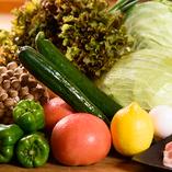 新鮮な地元野菜【茨城県/他】