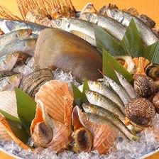 旬の鮮魚をご用意!