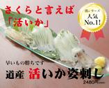北海道は「活いか」! いかを美味しく食べるなら、「活」にはかないません! 早いもの勝ちですので、ぜひ!