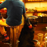 当店はペット可!愛犬と一緒にお過ごし頂けます◎