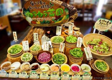 沖縄菜園ビュッフェ カラカラ あしびなー店 こだわりの画像