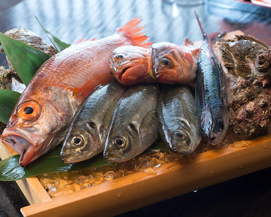 金沢港から毎朝仕入れる朝獲れ鮮魚