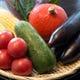 加賀野菜をはじめ、野菜もしっかりと召し上がれます。