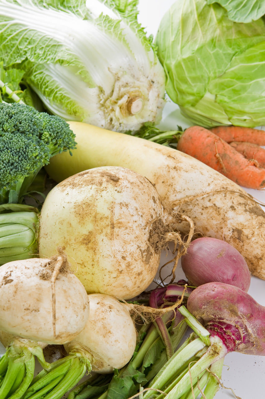 県内産を中心に新鮮「地場野菜」使用