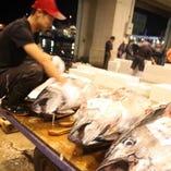 【九州より】目利きが選んだお魚が届きます!【奄美市】