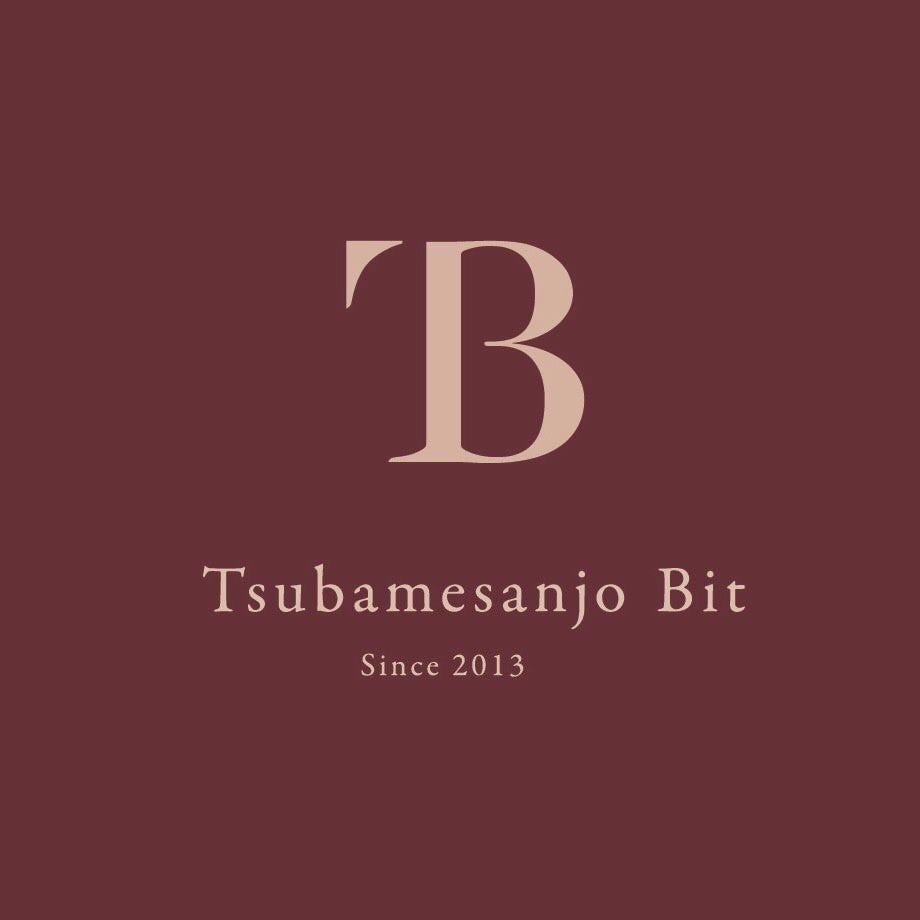 Tsubamesanjo Bit Niigata