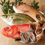 季節ごとの美味しいお魚を、鮮度にこだわって仕入れています