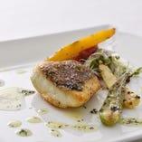 ≪ メイン料理 ≫ お肉料理かお魚料理をお選び下さい
