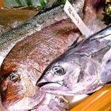 横浜で活魚が楽しめる!!店内生簀には鯛や平目、鯵などなど♪
