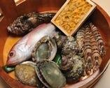 ウニ、アワビ、サザエ、ノドグロ等々  新鮮な海の幸