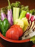 旬で新鮮な湘南地野菜が大人気です。