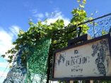 柏原市のボンシィクワイナリー。ブドウ栽培から醸造まで。