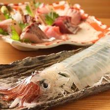 卸直営の活イカ!魚料理!