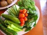 福島県三春の契約農家直送! 新鮮なお野菜をどうぞ♪