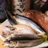 東海エリアの鮮魚や野菜、鶏肉・豚肉を使用したメニューが豊富!