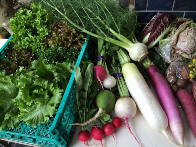 安全安心!自然栽培無農薬野菜を使用