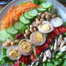 野菜たくさんのうちごはん系