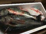 全国の漁港から届く新鮮な海の幸を!お刺身やカルパッチョで!