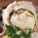 北海道厚岸産牡蠣