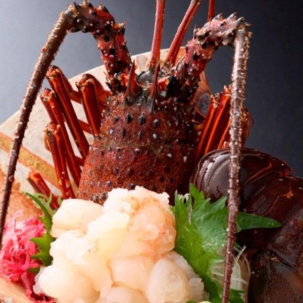 ぷりぷりの食感と上質な甘さが堪らない、欧州でも人気の伊勢海老