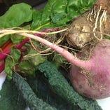契約農家から仕入れる野菜。生産の現場にも足を運んで見極める。