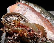 毎日市場で仕入れる新鮮な魚介類