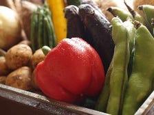 季節の野菜もたくさん!