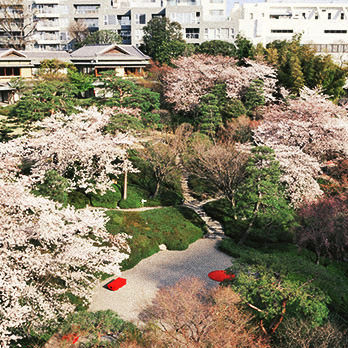 広大な庭を望む都会のオアシス