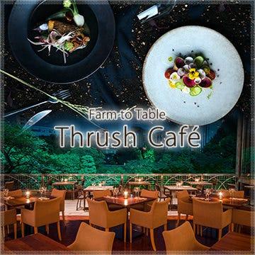 Thrushcafe